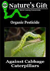 CATERPILLAR ORGANIC PESTICIDE AGAINST CABBAGE WHITE BUTTERFLY, MOTHS ON BRASSICA