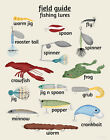 Fishing Lure Children's Nursery Art, Field Guide Series