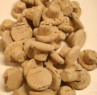 NATURAL TAPERED CORKS POST FREE >SIZE EIGHT 17x24x35 mm> ALL SIZES AVAILABLE
