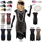 20's 1920s Vintage Flapper Dress Gatsby Charleston Sequin Fringe Costume Outfits