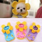 Pet Dog Cat Sunflower Costume Party Clothes Clothing with Cosplay outfit