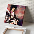 JIMI HENDRIX concert guitar cd painting CANVAS ART PRINT PRINT (Mounted)