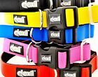 Dog Collar Neoprene Padded Waterproof Adjustable Various Colors Sizes S M L XL