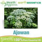 earthessence AJOWAN ~ CERTIFIED 100% PURE ESSENTIAL OIL ~ Therapeutic Grade