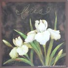 "ALP306 Iris Annie LaPoint 6""x6"" framed or unframed print art flower floral"