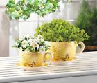 Charming Print Teacup Dolomite Planter w/ Drain Hole Flower Pot