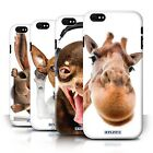 STUFF4 Case/Cover/Skin for Samsung Galaxy S Phones /Funny Animal Design