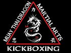 Muay Thai Dragon Martial Kickboxing Arts Wall Print POSTER