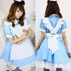 Alice in Wonderland Maid Lolita Blue Dress Costume For Halloween/Cosplay/Party