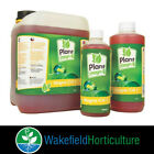 PLANT MAGIC PLUS MAGNE- CAL + 500ML, 1L AND 5L CALCIUM / MAGNESIUM ADDITITVE