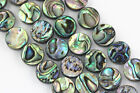 Natural Abalone Coin Shape Loose Beads Size 8/10/12/14/16mm 15.5'' Long
