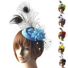 Attractive Headpieces Fascinator Feather Peacock Hair Clip Hat Party Ascot Races