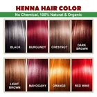 brown colour for hair - Organic henna hair dye color 60 grams for men and women 100% chemical free