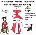 New Vest Pet Harness Non Pull Red SERVICE DOG Padded Waterproof Front Back Clip
