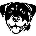 Rottweiler puppy face Rottie pet breed dog canine vinyl decal sticker