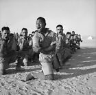 Maoris, North Africa, WWII, New Zealand Soldiers 1940's