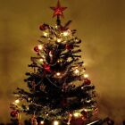 Pre-Lit 7'  Green  Pine Artificial Christmas Tree and Stand Color Lights New