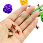 10 20 50 100 Ant Prank Funny Trick Joke Special Lifelike Model Fake  Ant Toy WK
