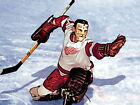 Terry Sawchuk Detroit Red Wings Goaltender Sport HUGE GIANT PRINT POSTER $8.95 USD on eBay