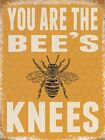 YOU ARE THE BEE'S KNEES - GENIUS SMART SUPER PERSON - METAL PLAQUE TIN SIGN 939