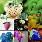 100pcs Home Garden Delicious Strawberry Seeds Vegetables Fruit Plant Seeds