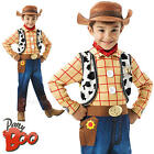 Deluxe Toy Story Woody + Hat Boys Fancy Dress Disney TV Book Cowboy Kids Costume
