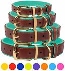 Leather Dog Collar Brass Buckle S M L XL Soft Padded Pink Red Blue Mint Green
