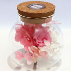 Preserved Real Flowers Rose Glass Gift Birthday Valentine's Day Glass Cover New