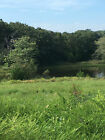 2.25 Acre Lot in Forbes Lake of the Ozarks