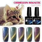 cat eye gel nail polish magnetic chameleon