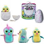 2017 Hot Hatchimals Pengualas Draggles Owlicorn 100% Genuine Sealed FAST POST UK