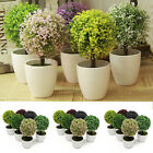 Home Garden - 1x Artificial Fake Planter Grass Ball Pot Bonsai Home Garden Wedding Party Decor