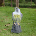 Falcon Scare Cat Scarer Rabbit Bird Repeller Cat Pest Control Ornament
