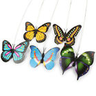Pet Electric Rotate Bird Butterfly Teaser Cat Steel Wire Interactive Toy UK