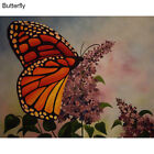 DIY Resin Diamond Painting Beauty Butterfly Embroidery Craft Home Decor Frugal