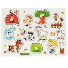 Kids Hand Puzzle Toys Wooden People Animal Design Educational Learning Toy New