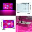 300W Full Spectrum LED Plant Grow Light Veg Bloom Lamp Indoor Greenhouse Garden