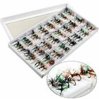 Assortment Colorful dry Fly Fishing Flies - bass, salmon, trout and other fish