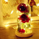 LED Enchanted Rose Flower Lamp Best Mother's Valentine' Day Beauty and The Best