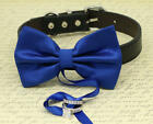 Royal Blue Dog Bow Tie Collar, Some thing blue Dog ring bearer Proposal Handmade