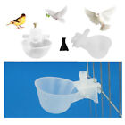 10 Pack Chicken Poultry Automatic Watering Cup Bird Pigeon Drinker Feeder Bowl