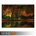 FALL FLOOD (AE075) NATURE POSTER - Photo Picture Poster Print Art A0 A1 A2 A3 A4