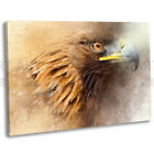 Golden Eagle Abstract Paint Canvas Print Framed Wall Art Picture
