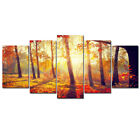 Canvas Wall Art Prints Painting Pictures Photo Home Decor Landscape Sea Floral