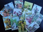 BB31A Lot of 13 Vintage Flower Fairies #A DIE CUTS for CARD MAKING Free Shipping