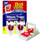 Mouse Trap The Big Cheese Quick Click Mouse Trap Baited Ready To Use Triple Pack