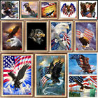 Внешний вид - Hawk Eagle Full Drill DIY 5D Diamond Painting Embroidery Cross Stitch Kits Art