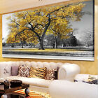 Large Tree Yellow Leaves Nature Pictures Print Canvas Wall Art Prints Unframed.
