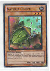 Yu-Gi-Oh Naturia Cimice HA04-IT048 Super Rara Ita