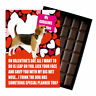 Funny Novelty Valentines Belgian Milk Chocolate Gift Box Present For Dog Owner